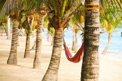 Het doorbrengen van Luie Tijd aan Hangmat in Tamper Florida de V Stock Afbeeldingen