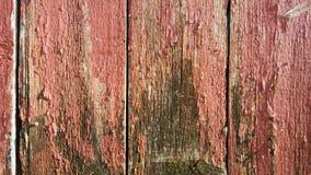 Het doorstane Schuurhout schilderde rood die oud grijs langzaam verdwijnen Stock Afbeeldingen
