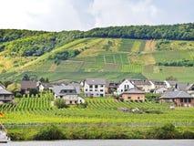 Het dorp en de wijngaard van Ellenzpoltersdorf op Moezel Stock Afbeelding