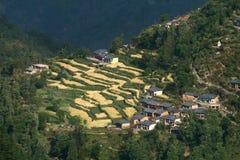 Het dorp met terrasvormige gebieden Stock Foto