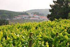 Het dorp Obidos Lissabon Portugal van de wijn royalty-vrije stock afbeeldingen