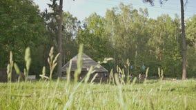 Het dorp is op de rand van een groen bos Landelijk landschap De hut van het land Platteland De zomer stock footage