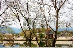 Het dorp representatief voor Hui Style Architecture in China royalty-vrije stock afbeeldingen