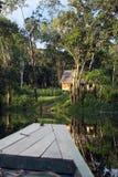 Het dorp van Amazonië door boot royalty-vrije stock fotografie