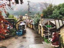 Het dorp van de Yufuinflora stock foto's