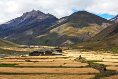 Het dorp van Dhotarap, Dolpo, Nepal royalty-vrije stock foto