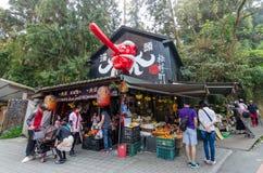 Het Dorp van het Xitoumonster in Xitou, Taiwan Stock Afbeelding
