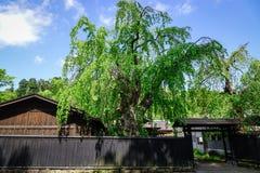 Het Dorp van Kakunodatesamoeraien in Akita, Japan stock afbeeldingen