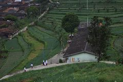 Het dorp van het ochtendmilieu A in de ungaranbergen Royalty-vrije Stock Afbeeldingen