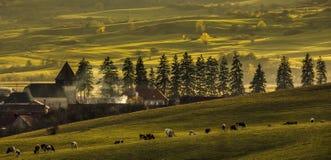 Het dorp van Transylvanian royalty-vrije stock afbeeldingen