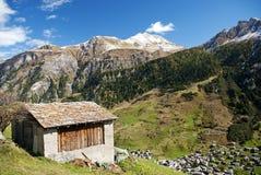 Het dorp van Vals in de alpen van Zwitserland royalty-vrije stock afbeeldingen