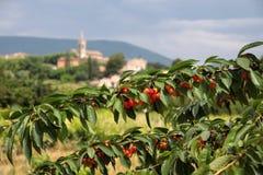 Het dorp van Villars in de Provence stock fotografie