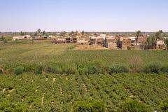 Het Dorp van wijnstokken Stock Fotografie