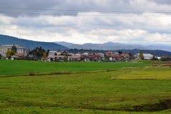 Het dorpsmening Pivka Postojna, het gebied van Prestranekslovenië van Ljubljana Notranjska Stock Foto