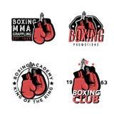 Het in dozen doen, MMA en vechtsporten als thema gehade kentekens Royalty-vrije Stock Foto's