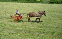 Het draaien van hooi op het landbouwbedrijf Royalty-vrije Stock Afbeelding