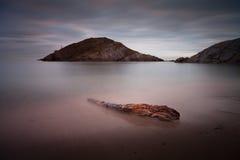 Het drijfhout mompelt strand royalty-vrije stock foto's