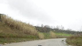Het drijven in de regen stock footage