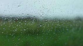 Het drijven in de regen stock video