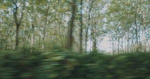 Het drijven in Forest Road stock videobeelden