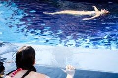 Het drijven op water Stock Foto