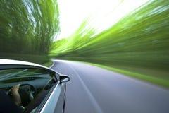 Het drijven van de auto snel in bos. Stock Fotografie