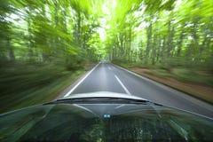 Het drijven van de auto snel in bos. Stock Foto's