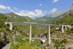 Het drijven van de trein op groot brug en viaduct Stock Foto