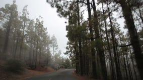 Het drijven van een auto op de bergweg stock video