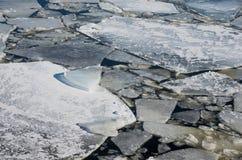 Het drijven van ijs Royalty-vrije Stock Afbeeldingen