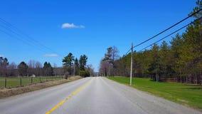 Het drijven van landelijke weg langs dieren en landbouwgrond tijdens de lentedag Bestuurdersstandpunt POV langs mooi zonnig platt stock footage