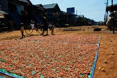 Het Drijvende dorp Kambodja van het Tonlesap stock foto's