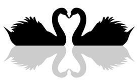 Het drijvende symbool van de zwaanliefde Royalty-vrije Stock Afbeeldingen