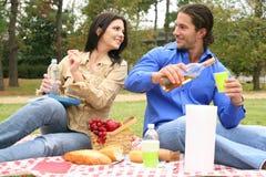 Het drinken op Picknick Royalty-vrije Stock Fotografie