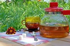 Het drinken van de thee Stock Afbeelding