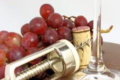 Het Drinken van de wijn Royalty-vrije Stock Afbeelding