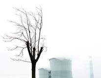Het droge boomsilhouet met de achtergrond van rookstapels Royalty-vrije Stock Foto