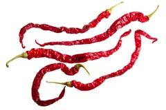 Het droge GEWICHT Chili annuum x van Bangalore frutescens, bovenkant, wegen Royalty-vrije Stock Fotografie