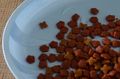 Het droge voedsel van de korrelkat Stock Foto