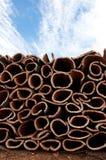 Het drogen van cork Stock Foto's