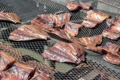 Het drogen van vissen op netto Royalty-vrije Stock Fotografie