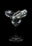 Het dronken drijven Royalty-vrije Stock Fotografie