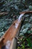 het druipende water van de bamboepijp Stock Foto's