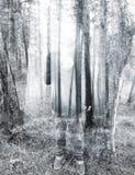 Het dubbel exposured bos en de mens Stock Afbeelding
