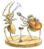 Het duet van spinnen Stock Afbeelding