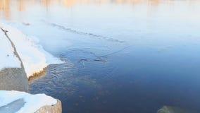 Het duidelijke water in een rivier stroomt langzaam in de lente stock videobeelden