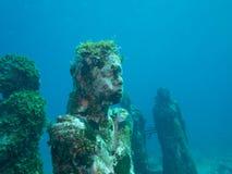 Het duiken bij het onderwatermuseum cancun Stock Foto