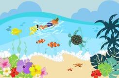 Het duiken in Hawaï Stock Foto's