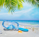 Het duiken masker en wipschakelaars onder een palm Royalty-vrije Stock Afbeelding
