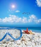 Het duiken masker en zeester onder een troep van flamingo's stock fotografie